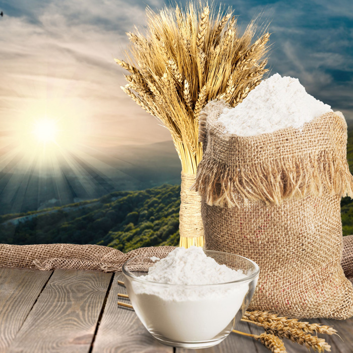 ADR-Exports-Home-Page-Products-Wheat